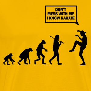 Dont mess with me i know karate - Men's Premium T-Shirt