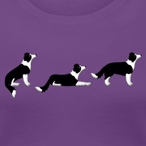 sit down stay border collie p Women's T-Shirts - Women's Premium T-Shirt
