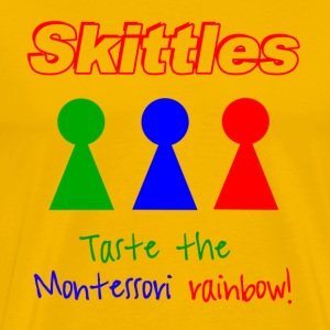 Taste the Montessori Rainbow - Men's Tee - Men's Premium T-Shirt