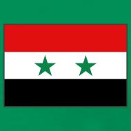 Design ~ Syria Flag T-Shirt