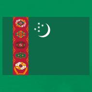 Design ~ Turkmenistan Flag T-Shirt