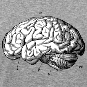 Anatomically Correct Brain - Men's Premium T-Shirt