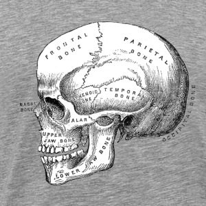 Anatomically Correct Skull - Men's Premium T-Shirt