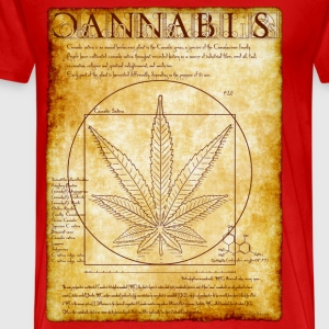 Vitruvian Cannabis-1 - Men's Premium T-Shirt