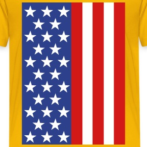 Stars and Stripes flag Kids' Shirts - Kids' Premium T-Shirt