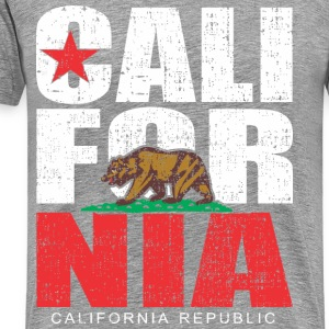 California Republic Bear dotted T-Shirts - Men's Premium T-Shirt