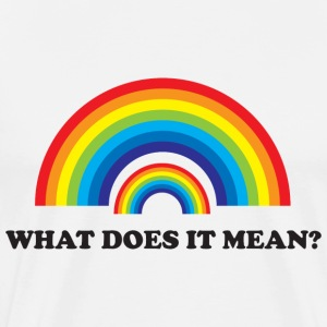 Double Rainbow. What does it mean? T-Shirts - Men's Premium T-Shirt