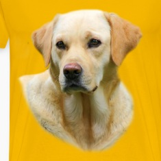 Yellow Lab T-shirt Worn in Hangover 2