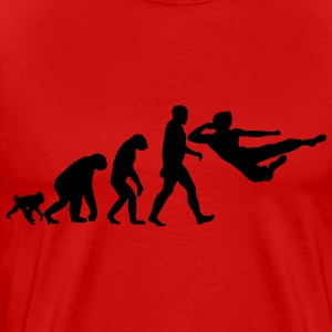 evolution of martial arts T-Shirts - Men's Premium T-Shirt