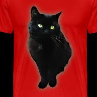Design ~ Black cat