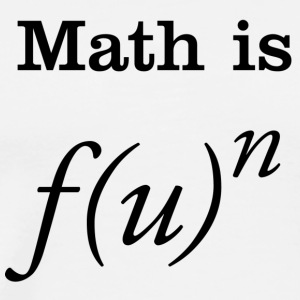 Math is Fun T-shirt - Men's Premium T-Shirt