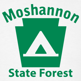 Design ~ Moshannon State Forest Keystone Camp