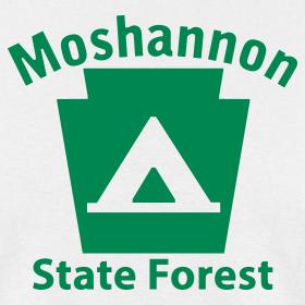 Design ~ Moshannon State Forest Keystone Camp