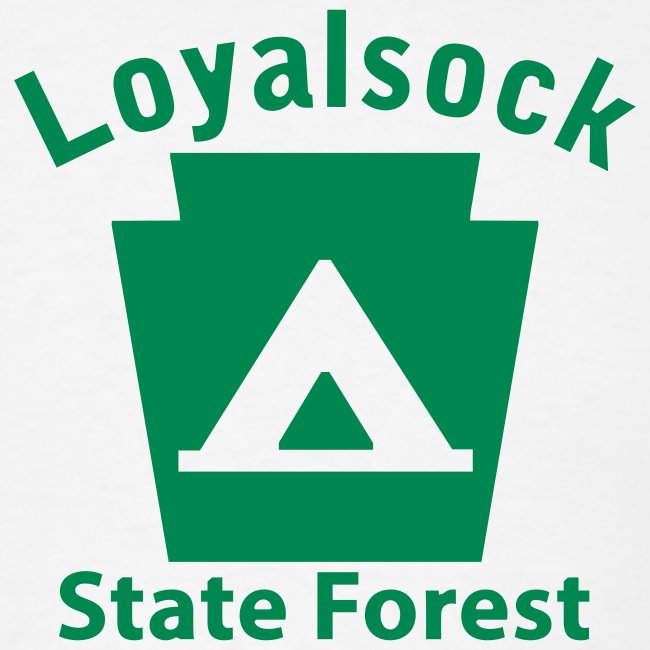 Loyalsock State Forest Keystone Camp