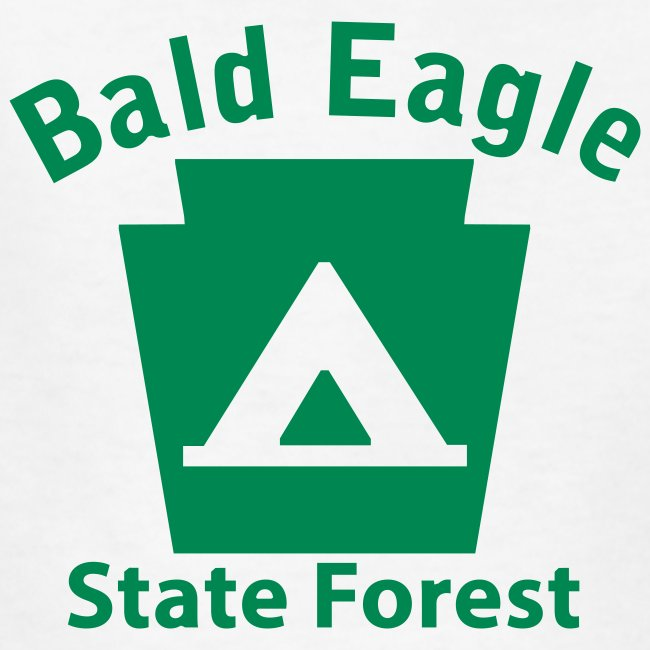 Bald Eagle State Forest Keystone Camp