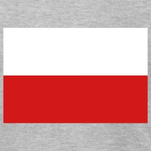 Heather grey Poland T-Shirts - Men's T-Shirt by American Apparel