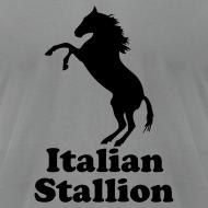 Design ~ Italian Stallion AA T, Slate
