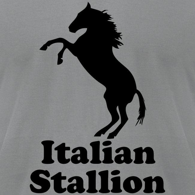 Italian Stallion AA T, Slate