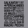 Ladies Salkantay Trek Tee - Women's V-Neck T-Shirt