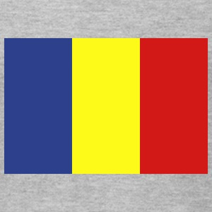 Romania T-Shirts - Men's T-Shirt by American Apparel