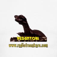 Design ~ Pedantor! (Ringer Tee)
