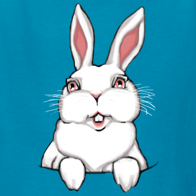 Kid's Easter T-shirts Easter Bunny Kid's Bunny Rabbit Shirts