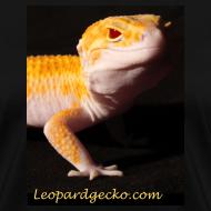 Design ~ Raptor - Leopardgecko.com