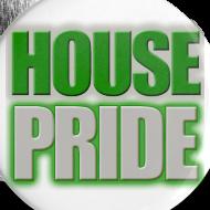 Design ~ House Pride Slytherin