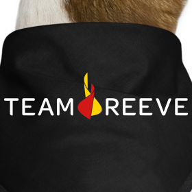Design ~ Team Reeve Dog Bandana