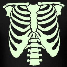A Human rib cage great for Halloween events and sc