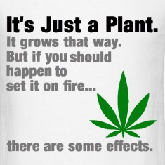 It's Just a Plant.