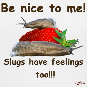 Lady's V - Be Nice To Me! Slugs Have Feelings Too!!! - Women's V-Neck T-Shirt