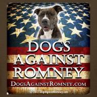 Design ~ Official Dogs Against Romney Pit Bull Women's Tee