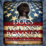 Design ~ Official Dogs Against Romney Portuguese Water Dog Tie Dye Tee