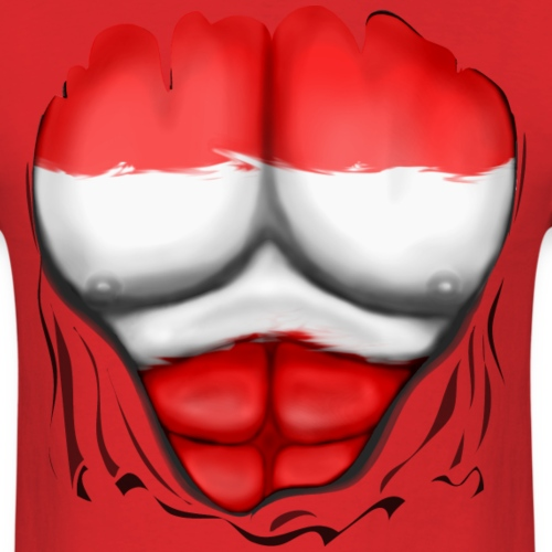 Austria Flag Ripped Muscles, six pack, chest t-shi