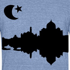 Taj Mahal India Men's Tri-Blend Vintage T-Shirt by American Apparel