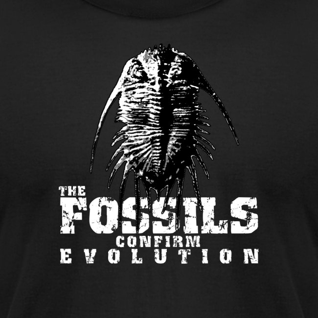 The Fossils confirm Evolution