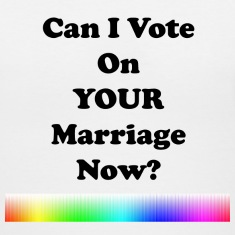 Can I Vote on Your Marriage Now?