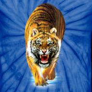 Design ~ Tiger