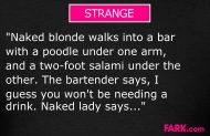 A naked blond walks into a bar with a poodle pics 905