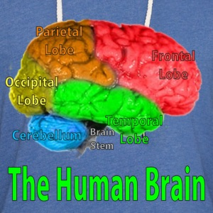 The Human Brain - Unisex Lightweight Terry Hoodie