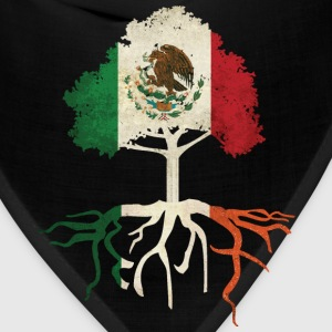 Mexican Irish Mexico Ireland Roots T-Shirts - Bandana