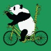Panda Bear Riding Bamboo Bike T-Shirts - Men's Premium T-Shirt