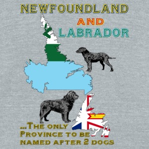 Newfoundland and Labrador dogs - Unisex Tri-Blend T-Shirt by American Apparel