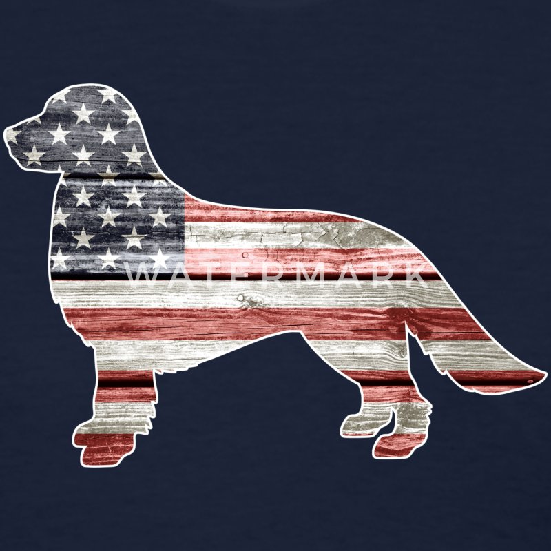 Patriotic Golden Retriever, American Flag - Women's T-Shirt