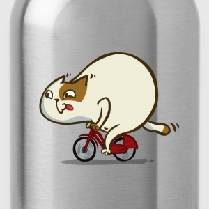 Bicycat — Friday Cat №46 - Water Bottle