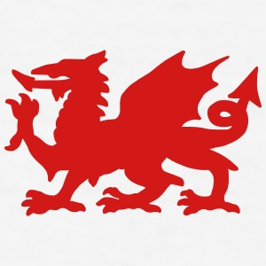 Welsh Dragon Mugs & Drinkware - Men's T-Shirt