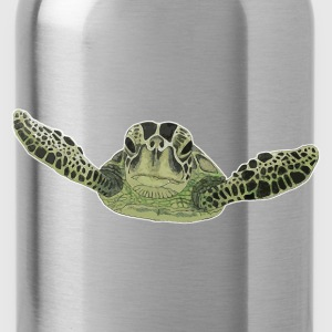 Green sea turtle  - Water Bottle