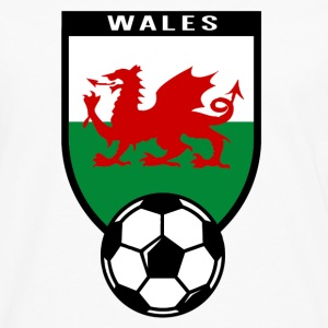European Football Championship 2016 Wales Kids' Shirts - Men's Premium Long Sleeve T-Shirt