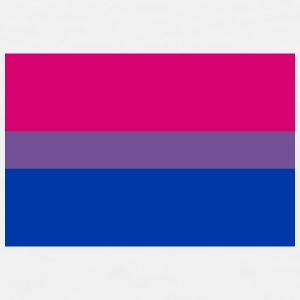 Bisexual Mugs & Drinkware - Men's Premium Tank